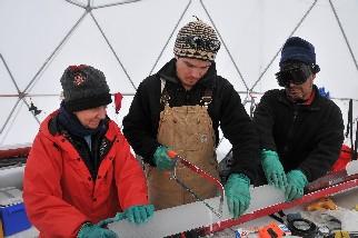 La carota viene misurata e segata da Ellen, Roberto e Felix che la ripongono poi in appositi tubi di cartone che verranno messi in speciali contenitori bianchi.