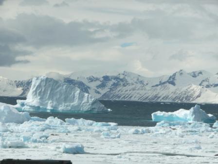 Icebergs nei pressi della base di Rhotera